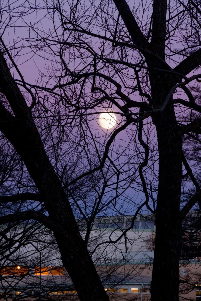 Fullmåne över Fyrishov