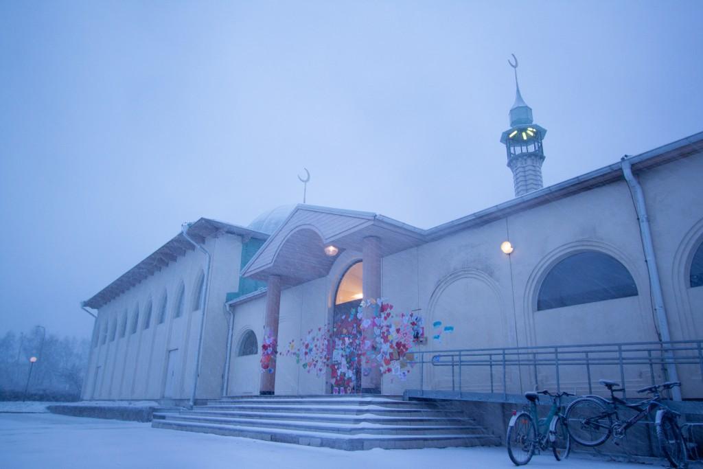 Moskén i yrsnö